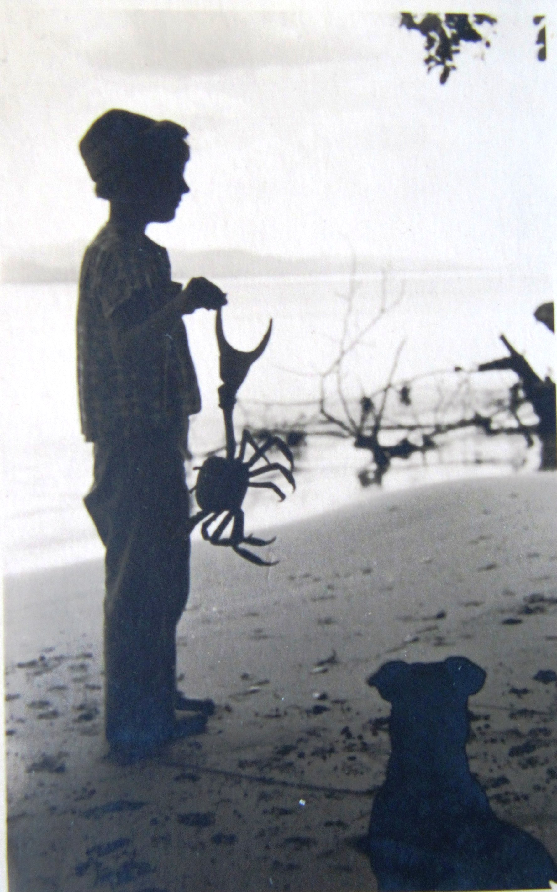 Old photo of Rita hold large crab (circa 1954)